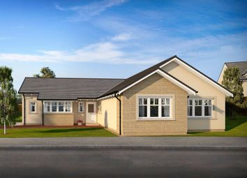 Thumbnail 4 bed bungalow for sale in Plot 14, Marlefield Grove, Tibbermore
