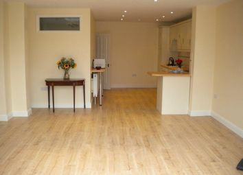 Thumbnail 3 bed terraced house to rent in Derwent Road, London