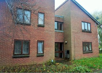 Thumbnail Studio for sale in William Tarver Close, Warwick