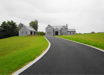 Thumbnail 4 bed detached house for sale in Mill Road, Enniskillen