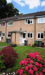 Thumbnail 2 bedroom property to rent in Lowick, York