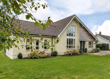 Thumbnail 4 bed detached house for sale in Goldcliff, Newport