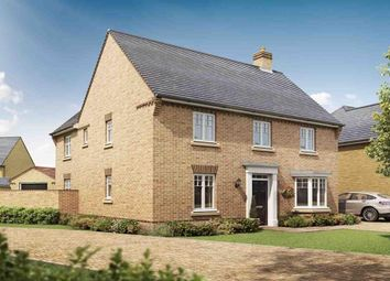 "Thumbnail 4 bedroom detached house for sale in ""Avondale"" at Southern Cross, Wixams, Bedford"