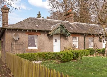 Thumbnail 2 bed semi-detached bungalow to rent in West Cottage, Campsie Hill, Guildtown, Perth