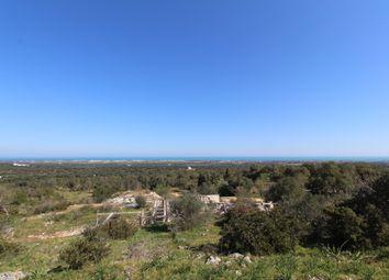 Thumbnail Land for sale in Contrada Spadalisco, Carovigno, Brindisi, Puglia, Italy
