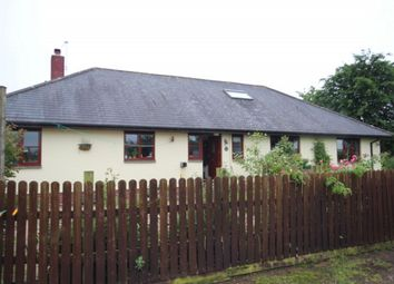 Thumbnail 4 bed detached bungalow to rent in Witheridge, Tiverton
