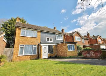 Thumbnail 4 bed detached house for sale in Minsterley Avenue, Shepperton, Surrey