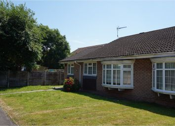 Thumbnail 2 bed semi-detached bungalow to rent in Henfield Way, Bognor Regis