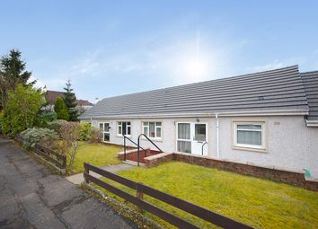 Thumbnail 1 bed terraced bungalow for sale in Knox Place, Newton Mearns