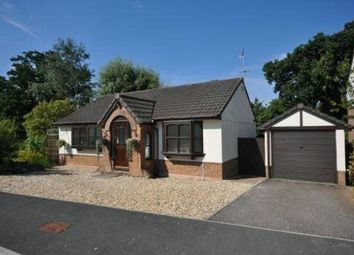 Thumbnail 3 bed detached bungalow to rent in Sages Lea, Woodbury Salterton, Exeter