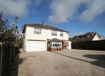 Thumbnail 5 bedroom detached house for sale in Shrub End Road, Colchester