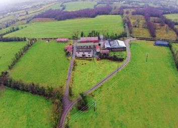 Thumbnail Land for sale in House & Lands At Derryvolan, Rosslea, County Fermanagh