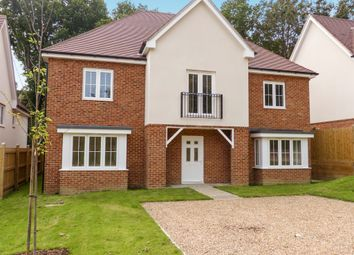 Thumbnail 5 bedroom detached house for sale in Amherst Road, Hastings