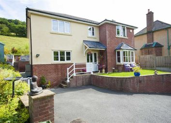 Thumbnail 4 bed detached house for sale in Dolywern, Pontfadog, Llangollen