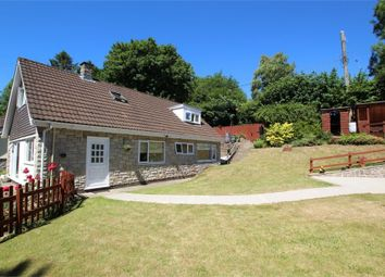 Thumbnail 4 bed detached house for sale in Rhyd-Y-Gwern Lane, Draethen, Newport