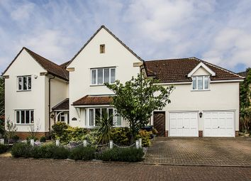 Thumbnail 5 bedroom detached house for sale in Hillside Meadow, Fordham