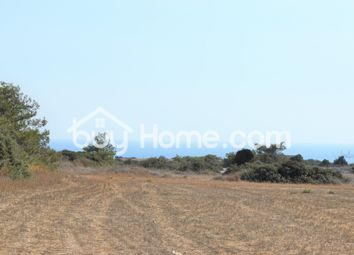 Thumbnail Land for sale in Maroni, Larnaca, Cyprus