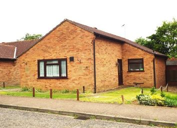 Thumbnail 2 bed bungalow to rent in Kestrel Avenue, Downham Market