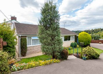 Thumbnail 3 bed detached bungalow for sale in Whitecroft, Lydney