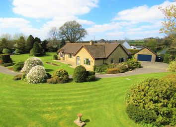 Thumbnail 5 bed detached bungalow for sale in Goldsmith Lane, All Saints, Axminster
