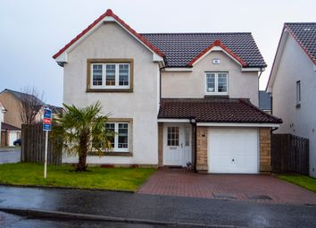 Thumbnail 4 bed detached house for sale in Fairley Drive, Larbert