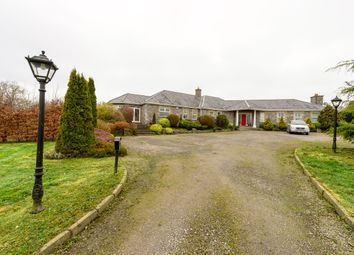 Thumbnail 5 bed detached house for sale in The Orchard, Borranstown, Garristown, Dublin