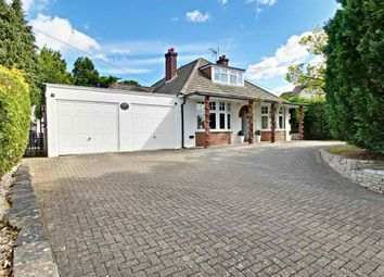 Thumbnail 4 bed detached bungalow for sale in Hatch Lane, Old Basing, Basingstoke