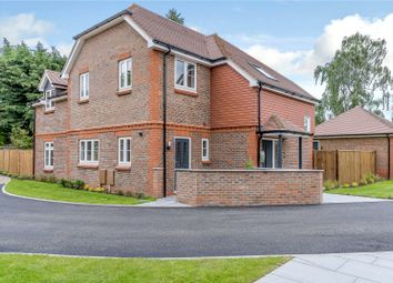 Houses for Sale in Daneshill School, Hampshire, RG27 - Buy
