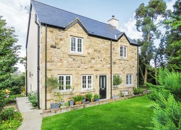 Thumbnail 4 bed detached house for sale in Alnwick