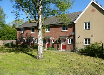 Thumbnail 2 bedroom property to rent in Sunderland Close, Carbrooke, Thetford