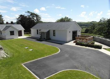 Thumbnail 3 bedroom bungalow to rent in New Cross, Aberystwyth