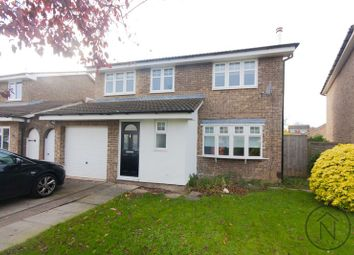 Thumbnail 4 bed detached house to rent in Speeton Close, Billingham