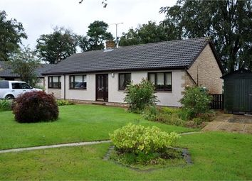 Thumbnail 3 bedroom detached bungalow for sale in Beech Grove, Rosehill, Gilsland