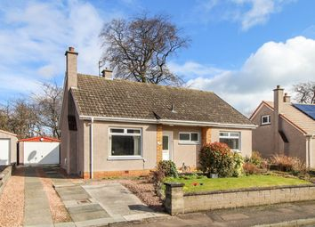 Thumbnail 3 bed bungalow for sale in Beech Park, Leven