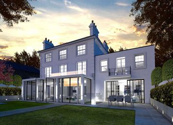 Thumbnail 6 bedroom detached house for sale in Elm Tree Road, London