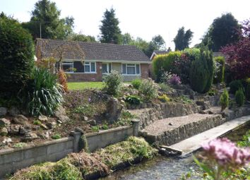 Thumbnail 4 bedroom detached bungalow for sale in Lower Road, Temple Ewell, Dover