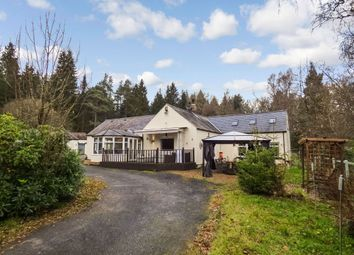 Thumbnail 4 bed bungalow for sale in Tarset, Hexham