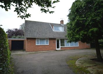 Thumbnail 4 bed detached bungalow for sale in St. Clements Hill, Norwich