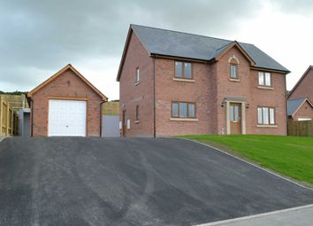 Thumbnail 4 bed detached house for sale in Pen Rhos Y Maen, Llanidloes, Powys
