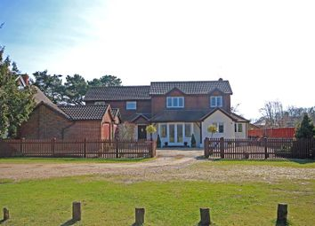 Thumbnail 5 bed detached house for sale in Balmer Lawn Road, Brockenhurst