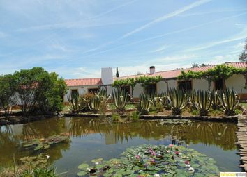 Thumbnail 5 bed farm for sale in Montes Galegos, Aljezur, Aljezur