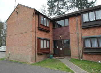 Thumbnail Studio to rent in Gazelle Court, Highwoods, Colchester