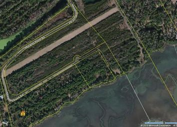 Thumbnail Land for sale in Mcclellanville, South Carolina, United States Of America