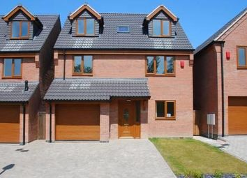 Thumbnail 4 bed detached house to rent in Maple Close, Storth Lane, South Normanton