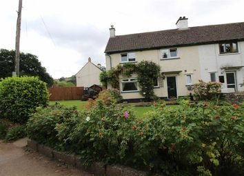 Thumbnail 3 bed semi-detached house to rent in Orchard Close, Skenfrith, Abergavenny