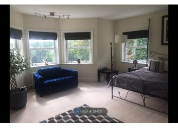 Thumbnail Room to rent in Scures Hill, Hook