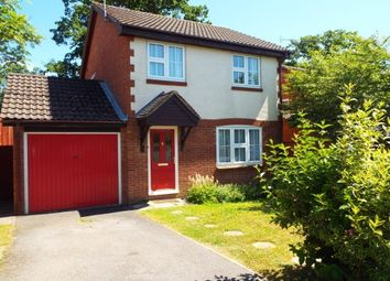 Thumbnail 3 bed detached house to rent in Clover Way, Romsey