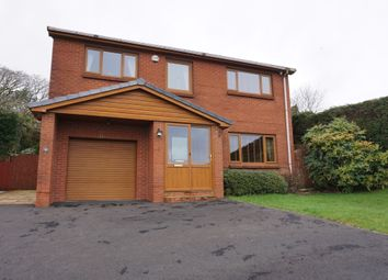 Thumbnail 4 bed detached house for sale in Brodawel, Llannon, Llanelli