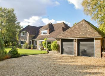 Thumbnail 6 bed detached house to rent in Brockenhurst, Hampshire