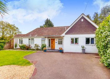 Thumbnail 4 bed detached bungalow for sale in Heathway, East Horsley, Leatherhead